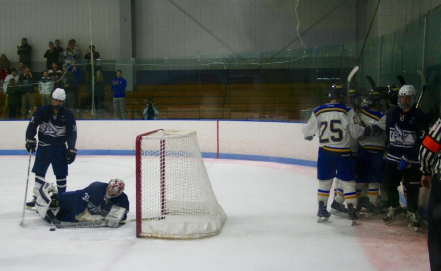The Roger Williams University club men's ice hockey team did a whole lot of celebrating Thursday night as they defeated the Westfield State University Owls 12-4 in the first round of the NECHA playoffs at Driscoll Arena in Fall River, Mass.