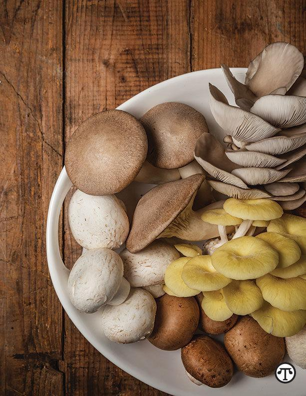 Mushrooms+Are+Ready+For+Their+Closeup