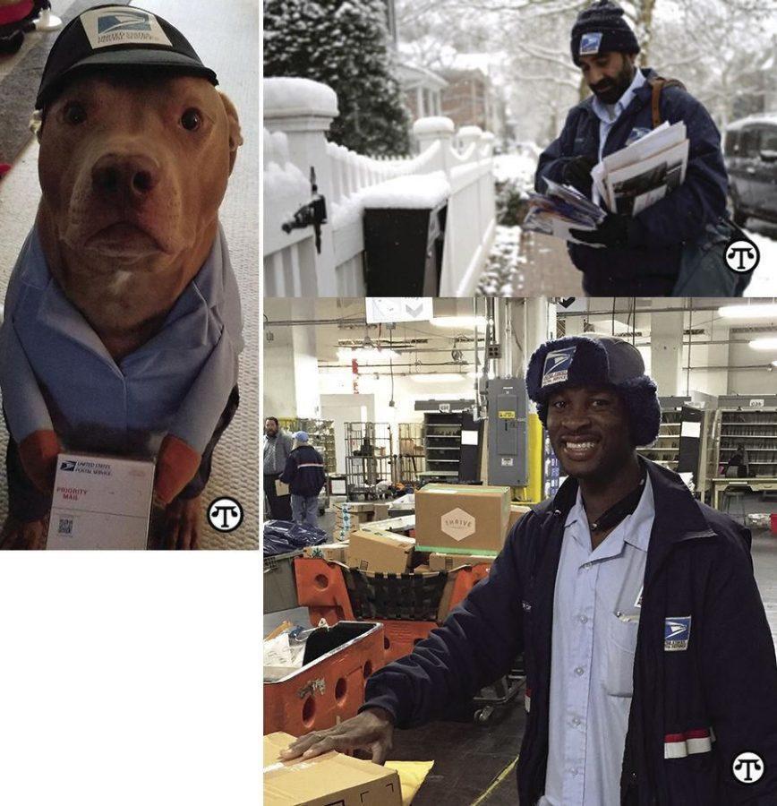 Sugerencias+de+seguridad+de+Pap%C3%A1+Noel+para+la+gente%2C+mascotas+y+paquetes