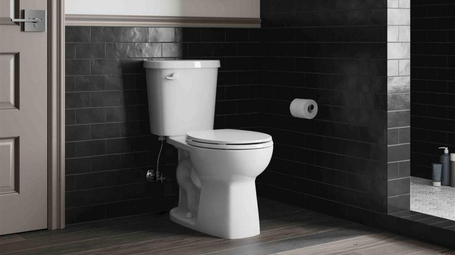 The+simple+guide+to+buying+a+toilet