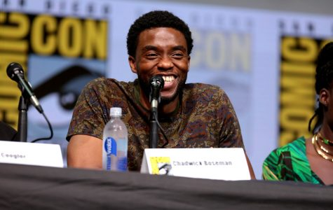 Chadwick Boseman, widely known for his role as the Black Panther in the movie