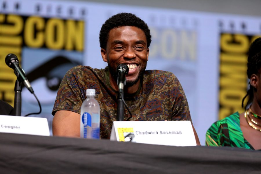 Chadwick+Boseman%2C+widely+known+for+his+role+as+the+Black+Panther+in+the+movie+%22Black+Panther%2C%22+passed+away+in+August+at+the+age+of+43.