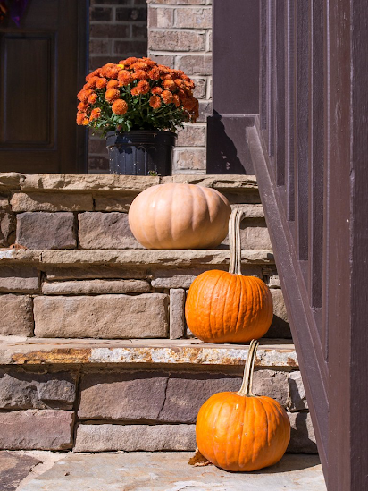 Chill out and craft these fall decorations