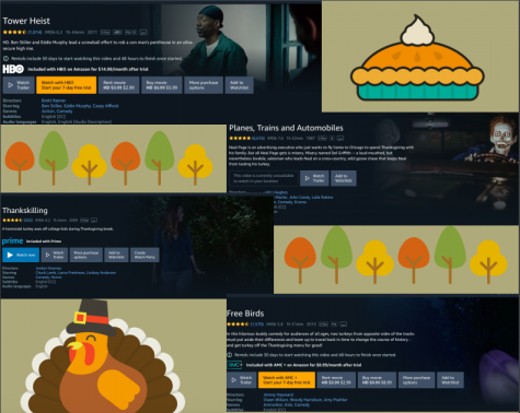 """Some Thanksgiving movies are """"Tower Heist,"""" """"Planes, Trains and Automobiles,"""" """"Thankskilling"""" and """"Free Birds."""""""
