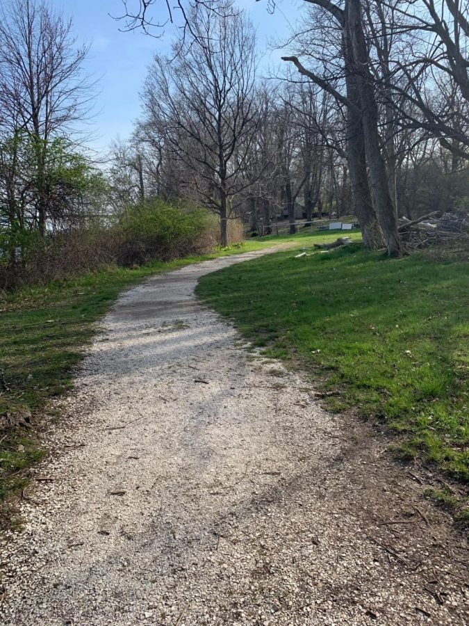 Go for a nature walk along the shell path here at RWU to spend time in nature this season.