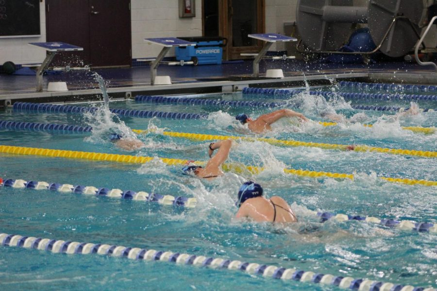 RWU's men's and women's swimming and diving teams at practice on Friday, April 9, getting ready to compete in their virtual meet on Saturday, April 10.