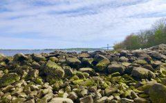 RWU is the new host of the Narragansett Bay Estuary Program. The program is dedicated to helping the Narragansett Bay.